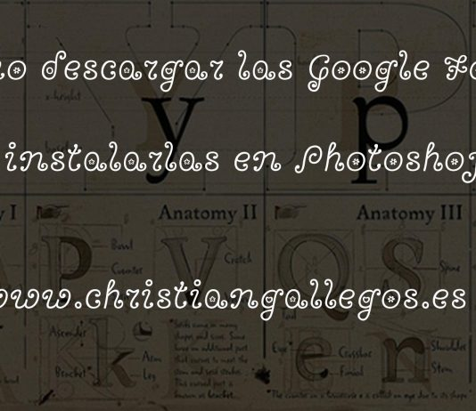 descargar google fonts