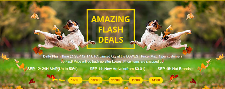 gearbest-amazing-flash-deals